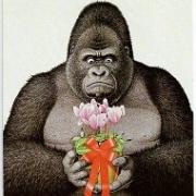 Татьяна Новикова (Коткина)